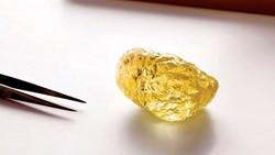 Kim cương lớn nhất Bắc Mỹ