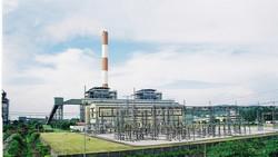 Điện than đi ngược phát triển kinh tế xanh