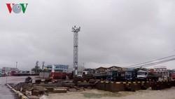 Cảng Quy Nhơn hiện tại đạt 6,5 triệu tấn hàng hoá thông qua cảng/năm