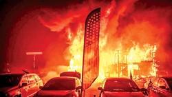 California đỏ lửa