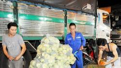 Cuối quý 3-2019, nông sản sạch mới được nhập chợ TPHCM