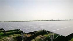 Dự án Sao Mai Solar PV2 tại tỉnh Long An, công suất 50MW hoàn thành hơn 70%.