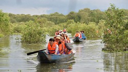 Rừng Tràm Trà Sư thu hút hàng trăm ngàn lượt khách du lịch mỗi năm (nguồn ảnh Internet)
