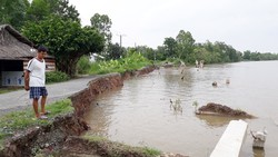 Hiện trạng công trình khắc phục sạt lở tuyến đê sông Gành Hào bị sạt lở