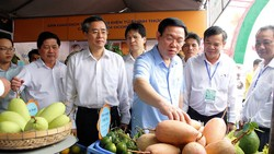 Phó Thủ tướng Vương Đình Huệ xem các sản phẩm nông nghiệp ở ĐBSCL