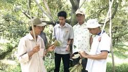 Kỹ sư Nguyễn Thanh Tâm (thứ ba từ phải sang) hướng dẫn nông dân kỹ thuật trồng cây, đảm bảo môi trường
