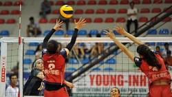 Giải bóng chuyền quốc tế sẽ diễn ra tại Vĩnh Long
