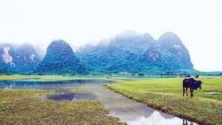 Blogger du lịch quốc tế khám phá Việt Nam