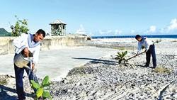 Lính đảo tăng gia sản xuất