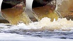 Hàng triệu USD vàng bạc trong nước thải