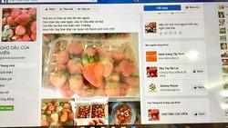 """Trang bán hàng trực tuyến """"Chợ dâu của Viên"""" được nhiều khách hàng ghé thăm"""