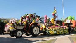 Công bố thời điểm tổ chức Festival hoa Đà Lạt lần thứ VII-2017
