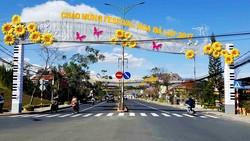 Đường phố Đà Lạt được trang trí trước thềm Festival Hoa. Ảnh: ĐOÀN KIÊN