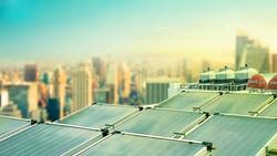 Trang trại điện Mặt trời đầu tiên được đầu tư trên 100 tỷ đồng
