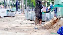Băn khoăn phương án cải tạo công viên