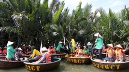 Hot tourism development devastates Bay Mau coconut forest in Quang Nam province (Photo: SGGP)