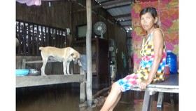 Mưa lớn kéo dài kết hợp với triều cường làm nhiều nhà dân sống ở lâm phần rừng tràm bị ngập