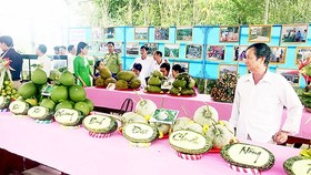 Agro-products of Hau Giang displayed (Photo: SGGP)