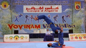 Martial artists compete at the event (Photo: VNA)