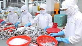 Vietnam's import-export turnover hits $264bln in first seven months