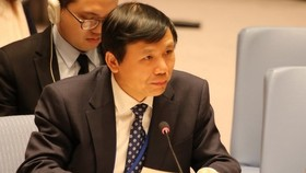 Head of Vietnam's Permanent Mission to the United Nations Dang Dinh Quy addresses the debate (Photo: VNA)