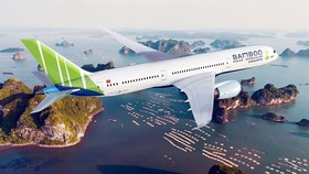 Bamboo Airways granted aviation business licence after long time wait