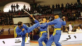 Vovinam athletes are competing (Photo: VNA)