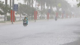 Medium- heavy rainfalls hit the central provinces from Quang Tri to Quang Ngai.