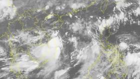 Áp thấp nhiệt đới cách bờ biển Đà Nẵng, Quảng Ngãi 250km, gió giật cấp 10