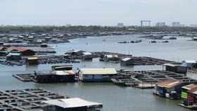 Đoạn sông Chà Và nơi xảy ra vụ tai nạn