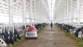 Sản xuất, chế biến thực phẩm tăng 10,69%