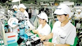 Kim ngạch xuất khẩu: Tăng trưởng mạnh nhưng thiếu ổn định