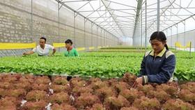 Lãnh thổ Đài Loan đầu tư mạnh tại Việt Nam