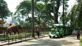 西貢動物園一瞥。(圖源:互聯網)
