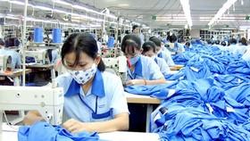 投資紡織品製衣業短缺的供應源。(圖源:互聯網)