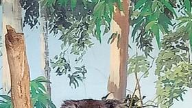 穿上棕色背心似的Koala