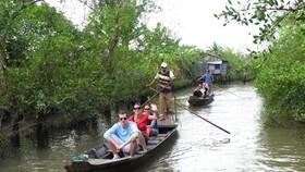 國際遊客參觀南部西區水鄉風光。(圖源:)