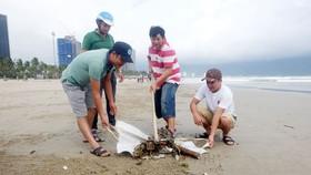 Dọn dẹp bờ biển du lịch Đà Nẵng vào sáng 11-12