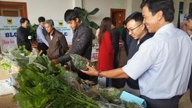 Phát triển sản xuất nông nghiệp hữu cơ theo hướng bền vững tại Lâm Đồng