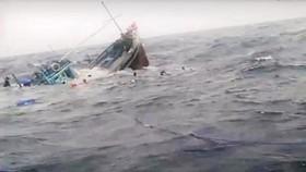 Truy tìm tàu vận tải đâm chìm tàu cá rồi bỏ chạy