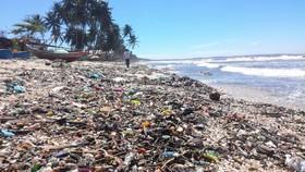 Bãi biển xinh đẹp ở vịnh Mũi Né ngập ngụa rác thải.