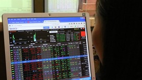 An investor watches share prices on a computer screen. (Photo: VNS)