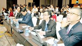 Delegates at the conference (Photo: SGGP)