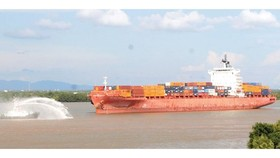 Seagoing vessel travelling to HCMC by waterway (Photo: SGGP)