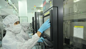 Semiconductor production at a Japanese business in Tan Thuan Export Processing Zone (Photo: SGGP)