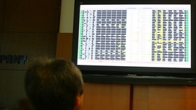 An investor watches stock movements at Bao Viet Securities Company (Photo: VNA)