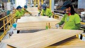Forestry products bring Vietnam a trade surplus of US$5.72 billion in the first ten months of 2018 (Photo: SGGP)