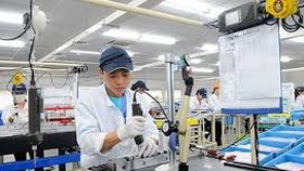 Sixty Belarusian firms seek investment opportunities in HCMC