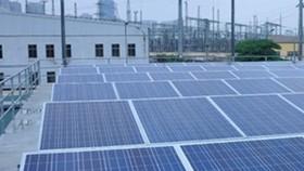 Đầu tư 2.480 tỷ đồng xây dựng 2 nhà máy điện mặt trời