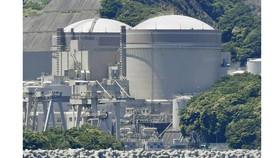 Nhà máy điện hạt nhân Oi. Ảnh: Kyodo)